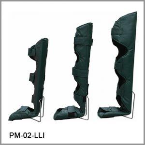 20032-PM-02-LLI_1