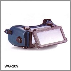 2021-WG-209