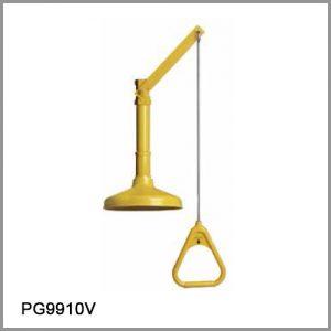 40013-PG9910V
