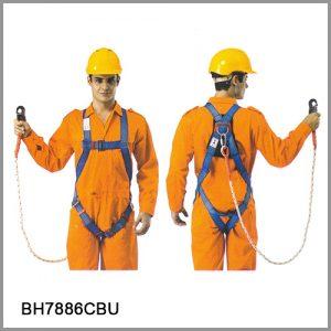 6006-BH7886CBU