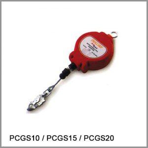 6017-PCGS10
